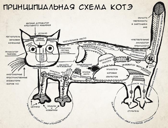 Принципиальная схема котэ